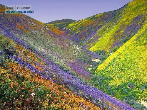 عکسهای طبیعت زیبای ایران