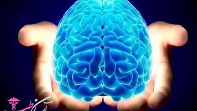 دشمن مغز