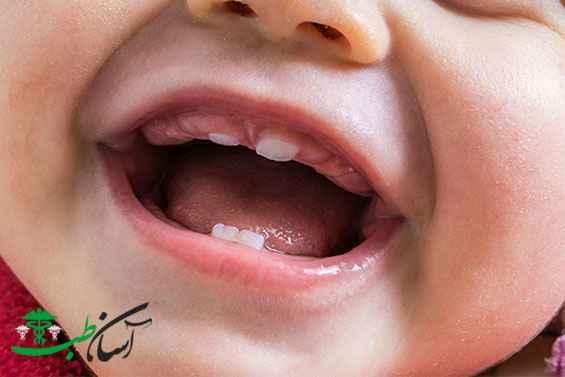 رشد دندان