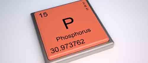 اهمیت فسفر در بدن