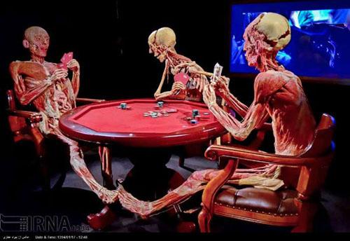 عکس نمایشگاه آناتومی بدن انسان