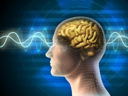 رشد مغزی
