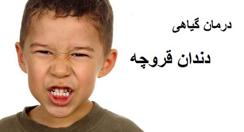 درمان گیاهی دندان قروچه
