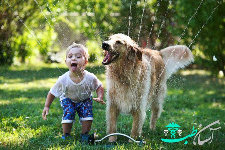5 اصل مهم در هنگام گردش سگ ها در محیط پارک