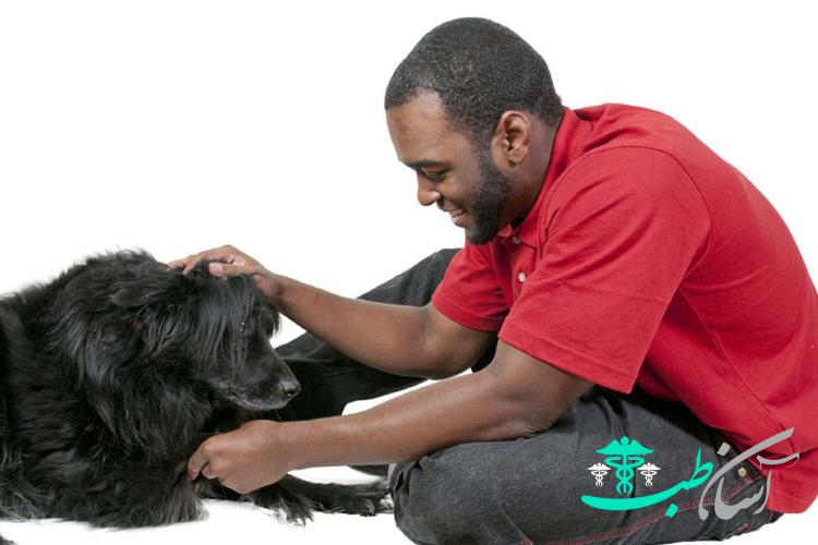 فواید نگهداری سگ:استرس کمتر