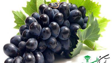 انگور فرنگی سیاه
