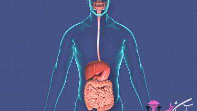 سیستم گوارش بدن